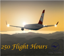 250 Flight Hours - given for completing 250 Flight Hours for DLHv